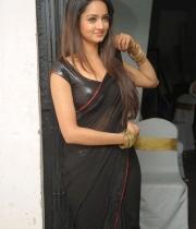 shanvi-hot-in-black-saree-photos-24