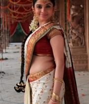 sheena-shahabad-hot-stills-in-saree-3