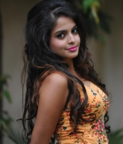 sheena-shahabadi-hot-pics-latest-2