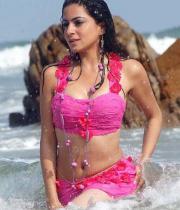 shraddha-arya-latest-hot-photos-06