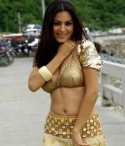 shraddha-arya-latest-hot-photos-11