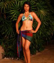 shraddha-das-hot-bikini-pics-14