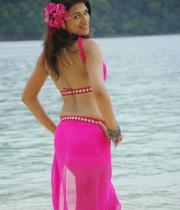 shraddha-das-hot-bikini-pics-15