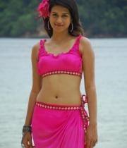 shraddha-das-hot-bikini-pics-17