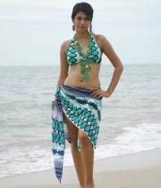 shraddha-das-hot-bikini-pics-04