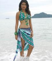shraddha-das-hot-bikini-pics-07