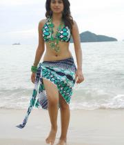 shraddha-das-hot-bikini-pics-09