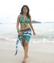 shraddha-das-hot-bikini-pics-10