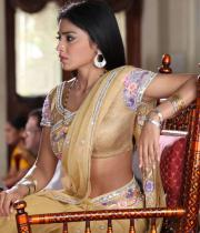 shriya-hot-stills-from-pavithra-01