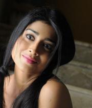 shriya-hot-stills-from-pavithra-03