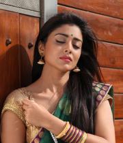 shriya-hot-stills-from-pavithra-04