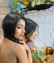 shriya-hot-stills-from-pavithra-06
