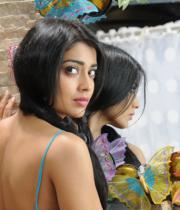 shriya-hot-stills-from-pavithra-07