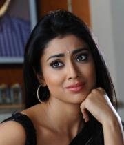 shriya-hot-stills-from-pavithra-10