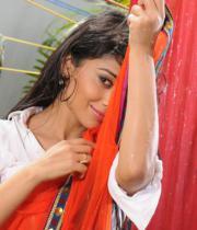 shriya-hot-stills-from-pavithra-12