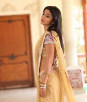 shriya-hot-stills-from-pavithra-14
