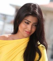 shriya-hot-stills-from-pavithra-17