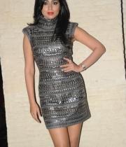 shriya-saran-at-siima-awards-2013-party-10