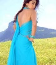 shriya-saran-hot-photos-12
