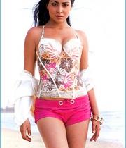 shriya-saran-hot-photos-14