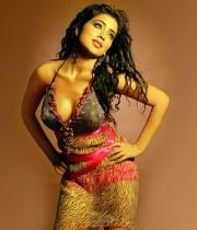 shriya-saran-hot-photos-15