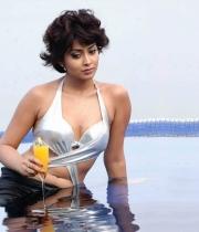 shriya-saran-hot-photos-20