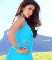 shriya-saran-hot-photos-24