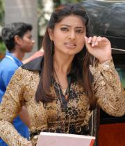 sneha-photo-shoot-photos-03
