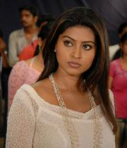 sneha-photo-shoot-photos-06