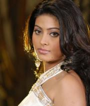 sneha-photo-shoot-photos-09