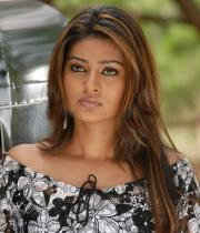 sneha-photo-shoot-photos-11