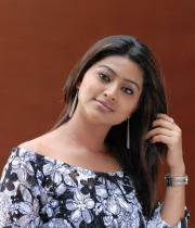 sneha-photo-shoot-photos-13