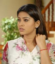 sneha-photo-shoot-photos-14