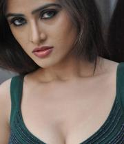 sony-charishta-hot-images-04