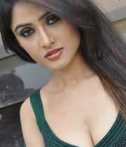 sony-charishta-hot-images-17
