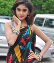 sony-charista-sleeveless-saree-photos-12