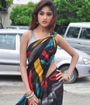 sony-charista-sleeveless-saree-photos-18