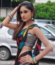 sony-charista-sleeveless-saree-photos-2