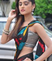sony-charista-sleeveless-saree-photos-3