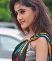 sony-charista-sleeveless-saree-photos-7