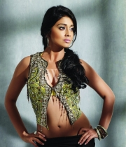 south_actresses_on_jfw_magazine_cover_photo_shoot_2302140904_004
