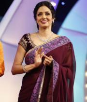 sridevi-saree-stils-at-tsr-awards-2013-1