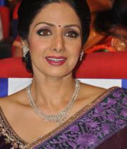 sridevi-saree-stils-at-tsr-awards-2013-10