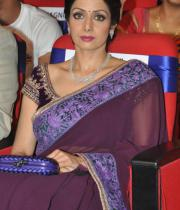 sridevi-saree-stils-at-tsr-awards-2013-11