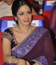 sridevi-saree-stils-at-tsr-awards-2013-12