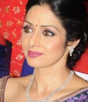 sridevi-saree-stils-at-tsr-awards-2013-13