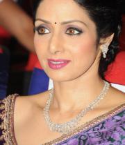 sridevi-saree-stils-at-tsr-awards-2013-15