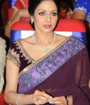 sridevi-saree-stils-at-tsr-awards-2013-16