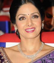 sridevi-saree-stils-at-tsr-awards-2013-19