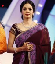 sridevi-saree-stils-at-tsr-awards-2013-2